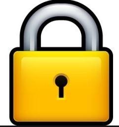 Ransomware Virus Support